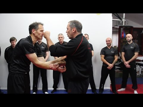 Wing Chun Kung Fu Chi Sau Paak on The Change