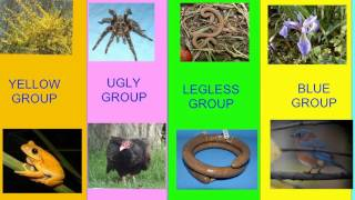 CLADISTICS INTRODUCTION TO BIOLOGICAL GROUPS