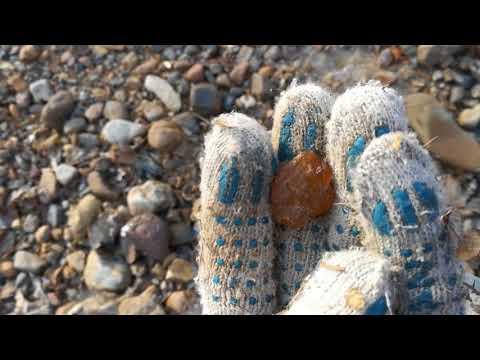 Поиски минерала сердолика в реке ( ручье ) Приморские самоцветы.