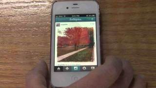 LileStyle Social Media Video Series: How to upload Instagram photos to your Facebook Page