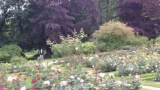 The rose garden at the Baronry, Rosendal, Norway