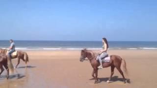 Horse riding in Agadir - Amodou Cheval