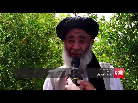 Afghanistan: 107 People Killed in Violent Incidents in A Week