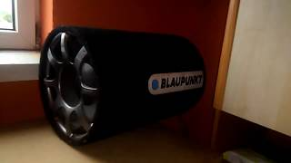 Bass I love you on my 12' Subwoofer Blaupunkt Gtt 1200