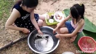 สาวเขมรกินงูทอดน้ำปลา By อีสานบ้านเรา พาเพลิน
