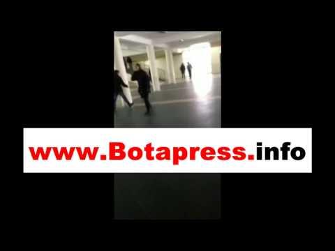 Skandaloze: Në një shkollë në Prishtinë hyjnë qentë (Video)