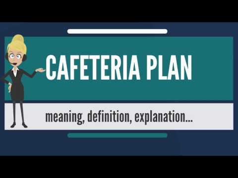 What is CAFETERIA PLAN? What does CAFETERIA PLAN mean? CAFETERIA PLAN meaning & explanation
