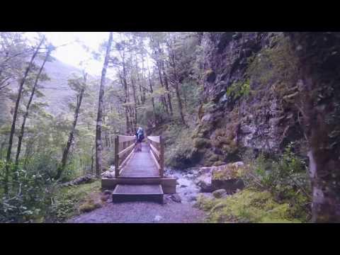 New Zealand Walks in the Arthur's Pass National Park