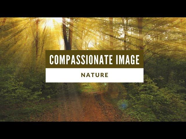 Compassionate Image (Nature)