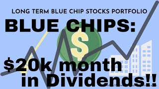 The Long Term Blue Chip Stocks Portfolio and Its Performance