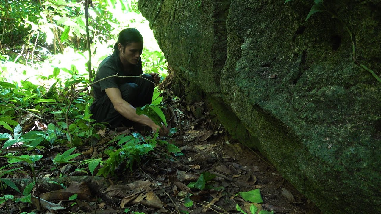 Download Follow the Trail and Rest by the Cave, Survival in the Tropical Rainforest, Ep 157