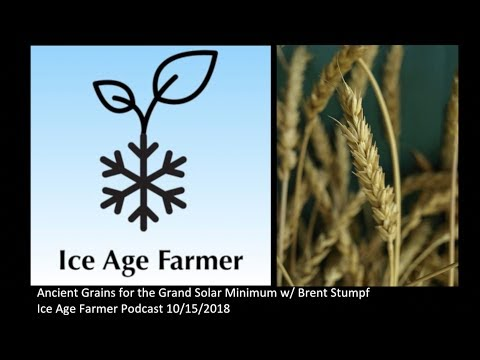 Ancient Grains for the Grand Solar Minimum with Brent Stumph (IAFP e036)