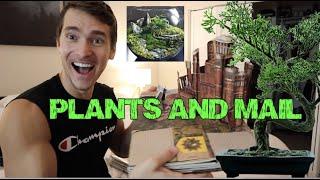 Opening PO Box stuff / Home Garden Tour/ Making a Fairy Moss garden!