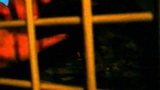 Видео, снятое в автозаке. Полицейский беспредел. 16.02.13(, 2013-02-17T00:21:47.000Z)