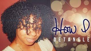 NATURAL HAIR | How I Detangle Multi-Textured Curly Hair Thumbnail