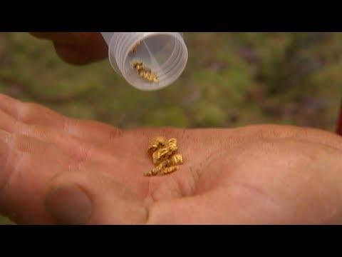 البحث عن الذهب في جزيرة استرالية  - 12:56-2019 / 9 / 11