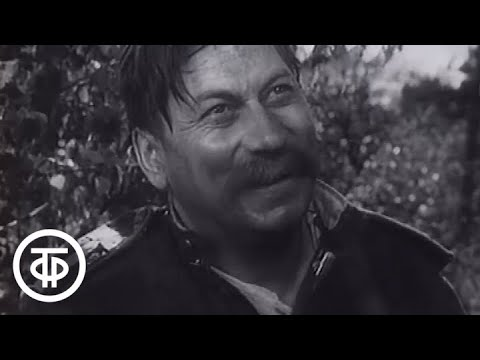 Страницы советского искусства. Литература. Театр. Фильм 5 (1986)