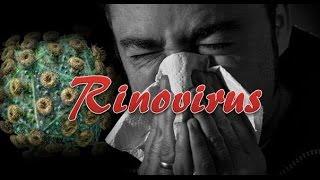 Rinovirus (Resfriado común)