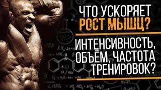 Объём Частота Интенсивность тренировок и Мышечная масса