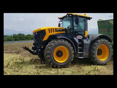 Cow Chow - Chopping Corn Silage following a JCB Fastrac 8330