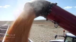 Iron Talk #807 - Grain Carts (Air Date 9/22/13)