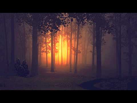 Клип Till Death - The Dark Woods