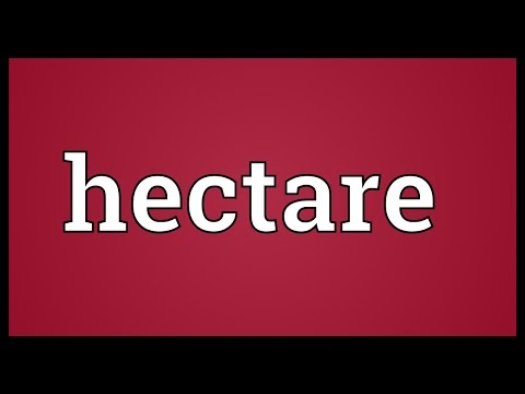 Hectare Meaning