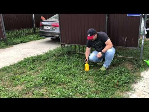 Вопрос: Как и что сделать, чтобы не рос сорняк и карагач вокруг участка?