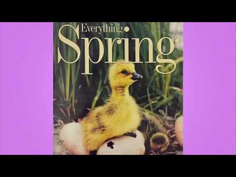 """National Geographic Kids: """"Everything Spring"""" by Jill Esbaum"""