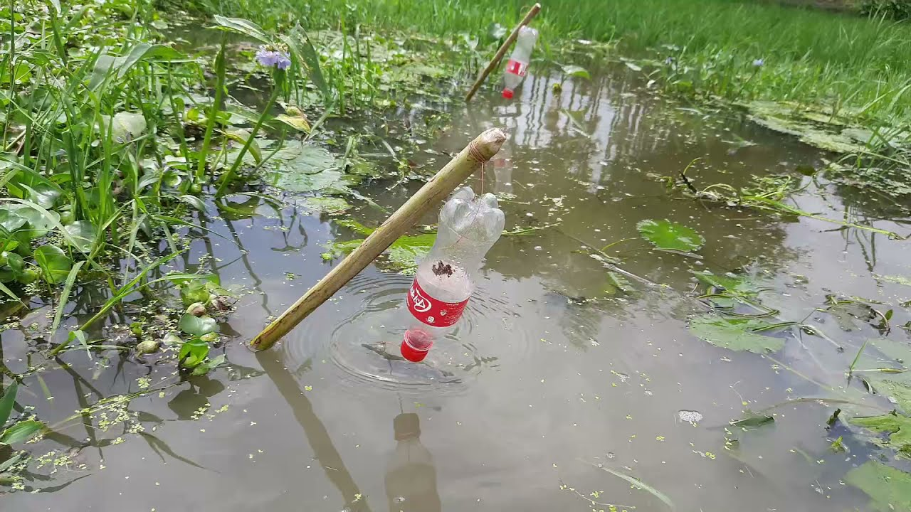 New Fishing System | Waste Plastic Bottle for Fishing