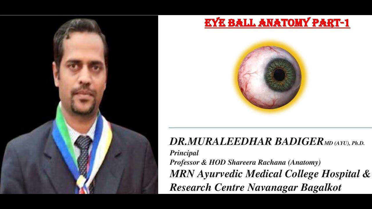 Eye ball anatomy 1 - YouTube