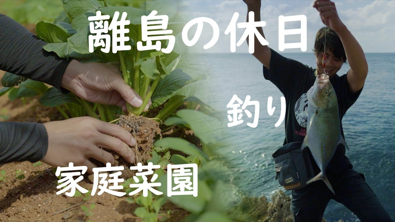 離島の休日を紹介します。釣りをして野菜を育てる。