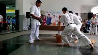 Kyokushin Karate 2 Baseball Bat Breaking