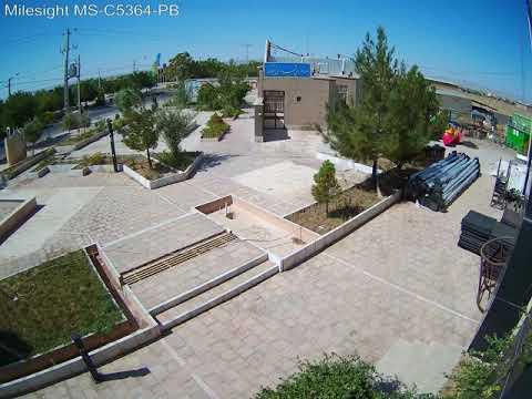 Milesight 5MP Vandal-proof Mini Bullet Network Camera - MS-C5364-PB(Moving Leaves)