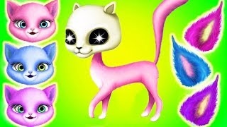 Fun Kitten Pet Care - Cat Hair Salon Birthday Party - Play Animal Care & Hair Salon Fun Kids Games