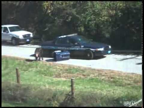 chimpanzee attacks cop car