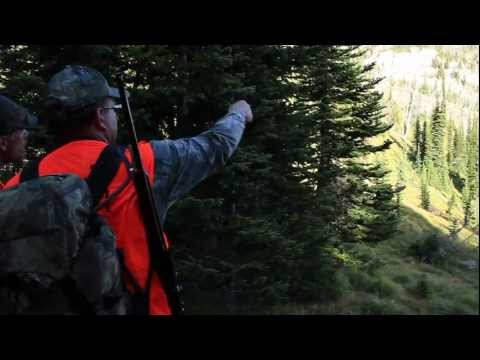 Swan Mountain Outfitters Hunting