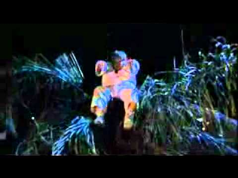 Beverly Hills Ninja (Tarzan Boy-Baltimora Scene).mp4