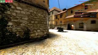Welsh Corgi - Home Video