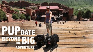 PUPdate : BEYOND The BIG Adventure thumbnail