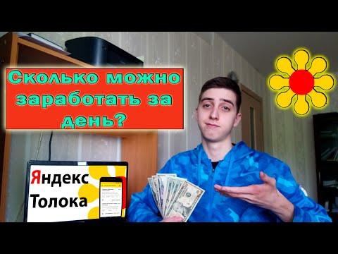 Сколько можно заработать за ДЕНЬ на Яндекс Толока? Заработок на Яндекс.Толока