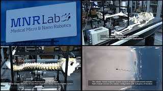 "GUC MNR Lab ""Medical Micro & Nano Robotics"""