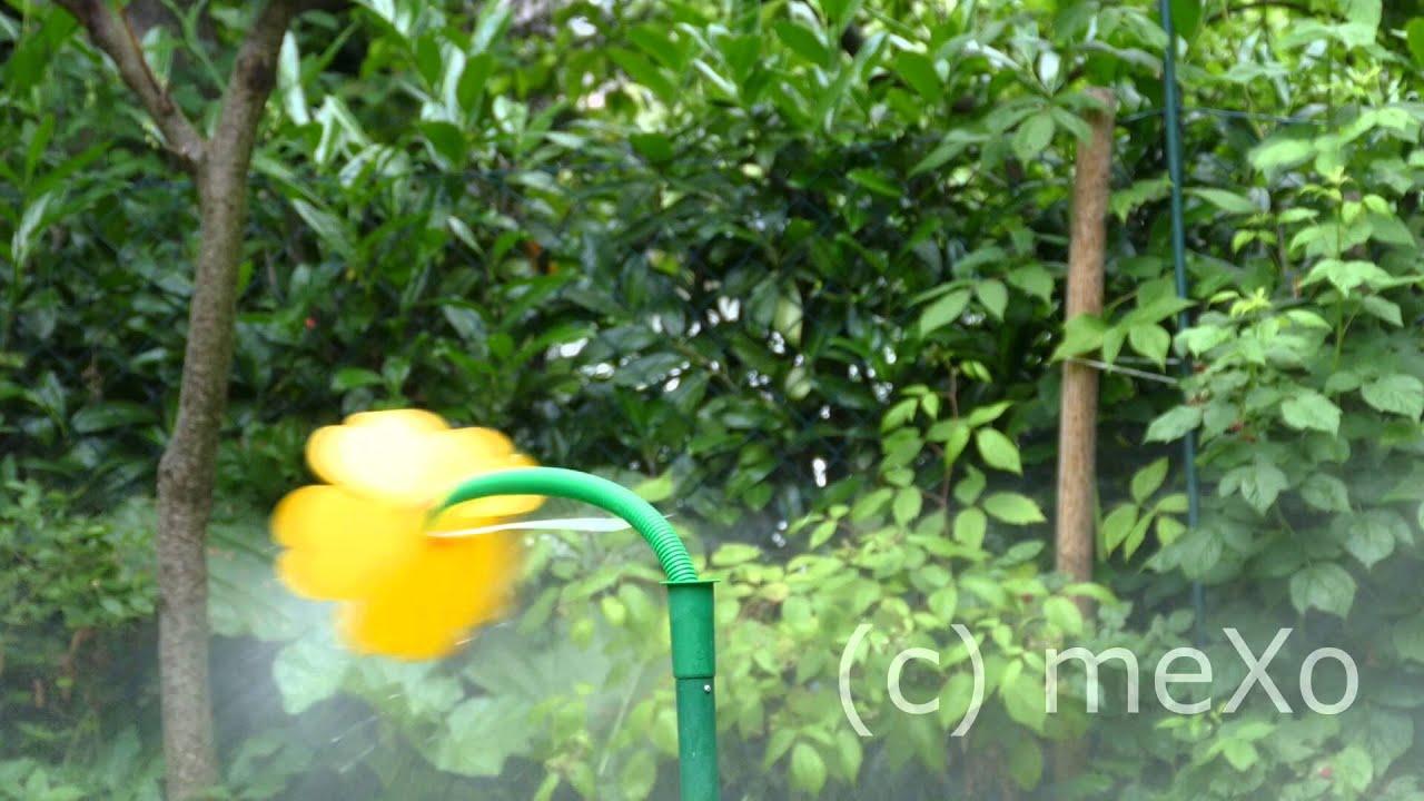 Flower Power Eine Wasserblume Cutscene Youtube
