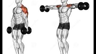 Bodybuilding     Latihan Membentuk Otot Bahu