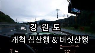 [ 약초 ] 개척산삼산행 & 버섯산행