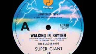 The Black Byrds Walking In Rhythm  12 Inch 1975