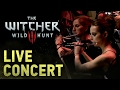 Video Game Show The Witcher 3 Wild Hunt Concert mp3