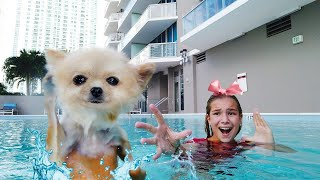 Maggie is swimming with puppy Shanti in the swimming pool! new best stories for kids