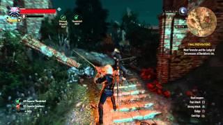 The Witcher 3: part 1 Kinda OP Feline  Build :) !!!~Just D0 IT!!
