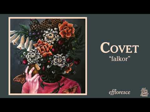 Covet - falkor (Official Audio)